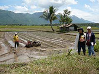 Unlad Kabayan Work in Mindanao Agriculture